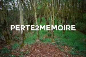 PERTE2MEMOIRE POSTER